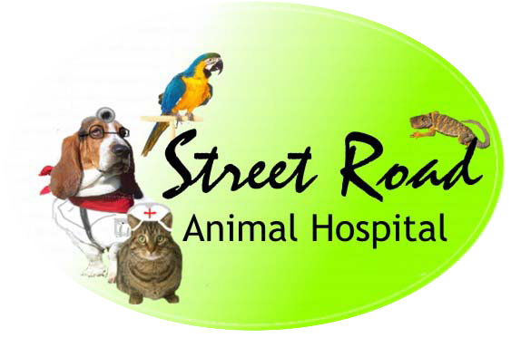 Street Road Animal Hospital - Trevose, PA - Home